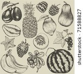 Hand Drawn Set Of Fruit And...