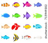 Set Of Different Fishes....