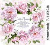 watercolor pink peonies frame...   Shutterstock . vector #716156038