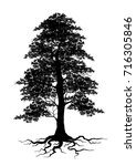 tree silhouette isolated on... | Shutterstock .eps vector #716305846