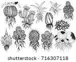 collection hand draw cactus | Shutterstock .eps vector #716307118