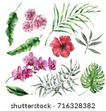 watercolor tropical set with... | Shutterstock . vector #716328382