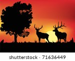 illustration with two deers at...