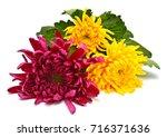 Flowers Beautiful Bouquet Of...