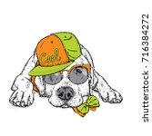 cute puppy in a cap and glasses.... | Shutterstock .eps vector #716384272