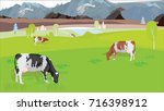 cows graze in the meadow in the ... | Shutterstock .eps vector #716398912
