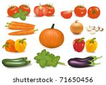 the big colorful collection of...   Shutterstock .eps vector #71650456