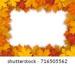 vector frame of fallen maple... | Shutterstock .eps vector #716505562