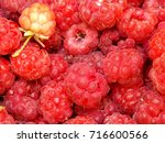 photo detail of some fresh red...   Shutterstock . vector #716600566
