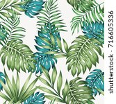 blue and green tropical leaves...   Shutterstock .eps vector #716605336