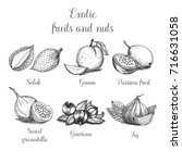 hand drawn exotic fruits and... | Shutterstock .eps vector #716631058