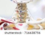 the vertebral column  also... | Shutterstock . vector #716638756