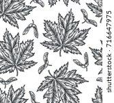 engraving seamless pattern of... | Shutterstock .eps vector #716647975