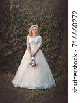lovely young bride in wedding... | Shutterstock . vector #716660272