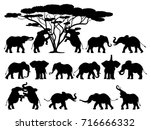 visual drawing silhouettes of... | Shutterstock .eps vector #716666332