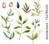 green autumn set | Shutterstock . vector #716784142