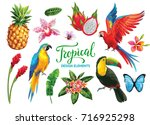 tropical collection  exotic... | Shutterstock .eps vector #716925298