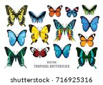Stock vector tropical butterflies set vector isolated elements on the white background 716925316