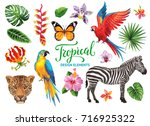 tropical collection  exotic... | Shutterstock .eps vector #716925322