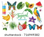 tropical collection for summer... | Shutterstock .eps vector #716949382