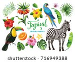 tropical summer collection ... | Shutterstock .eps vector #716949388