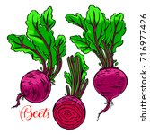 set of ripe beets. hand drawn... | Shutterstock .eps vector #716977426