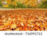 falling autumn leaves in park ... | Shutterstock . vector #716991712