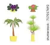 window gardening infographic... | Shutterstock .eps vector #717017692