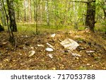 pollution of the forest by...   Shutterstock . vector #717053788