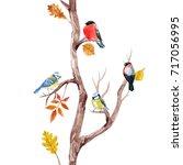 Watercolor Print Autumn Tree...