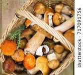 Small photo of Autumn fungi. Porcini. Mushrooms. orange-cap boletus