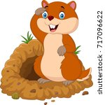 funny cartoon groundhog in... | Shutterstock . vector #717096622
