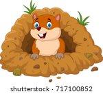 cartoon groundhog looking out...   Shutterstock . vector #717100852