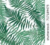 fern leaf vector fern leaf... | Shutterstock .eps vector #717189475