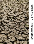 Small photo of Cracks in drought affected earth
