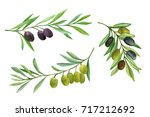 olives set. olive branch with... | Shutterstock . vector #717212692