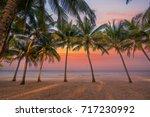 beach of the caribbean islands | Shutterstock . vector #717230992
