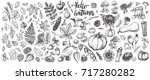 autumn nature vector sketches.... | Shutterstock .eps vector #717280282