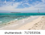 beach in the tobago cays  saint ... | Shutterstock . vector #717353536
