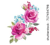 watercolor illustration of a... | Shutterstock . vector #717454798