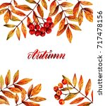 watercolor illustration. autumn ... | Shutterstock . vector #717478156