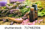 fresh lavender bunch  essential ... | Shutterstock . vector #717482506