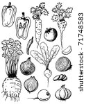 vegetable doodles set   soup... | Shutterstock .eps vector #71748583