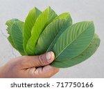 hand of asian workers is... | Shutterstock . vector #717750166