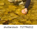 trout fishing in a mountain... | Shutterstock . vector #717796312