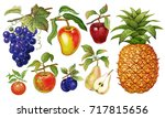 realistic fruits set. pineapple ... | Shutterstock .eps vector #717815656