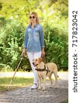 guide dog helping blind woman... | Shutterstock . vector #717823042