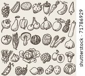 vegetables   doodles | Shutterstock .eps vector #71786929