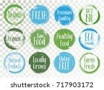 vector organic labels  bio... | Shutterstock .eps vector #717903172