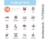 types of pets   modern vector... | Shutterstock .eps vector #717936016